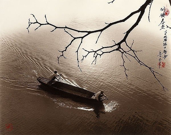 Фотограф Don Hong-Oai - №11