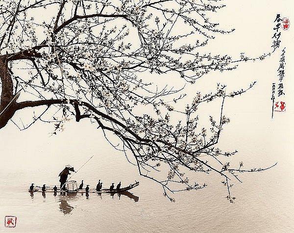 Фотограф Don Hong-Oai - №12