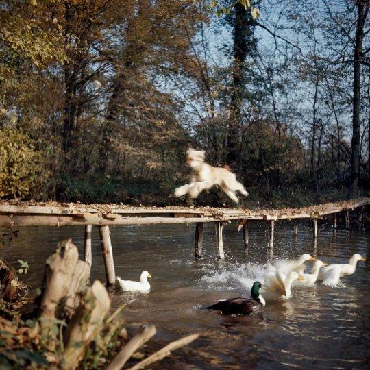 Фотограф Жак Анри Лартиг - №23