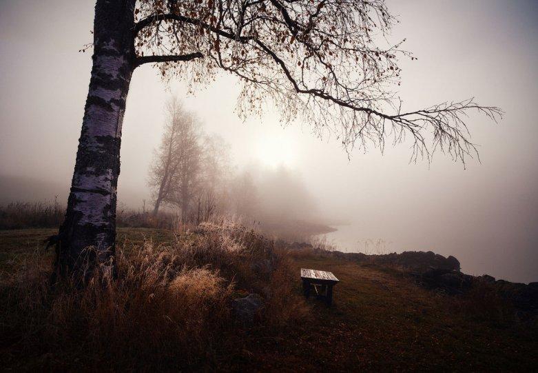 Фотограф Martynas Milkevicius - №8