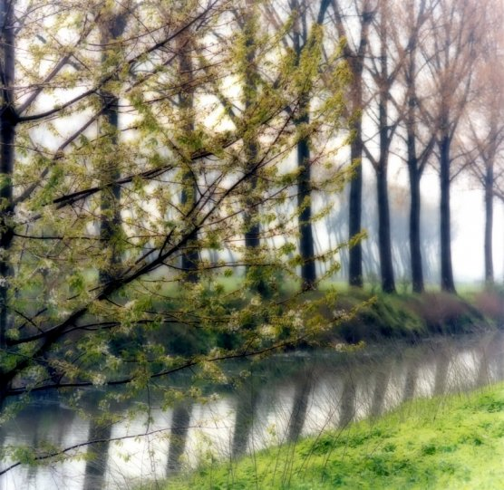 Пейзажи из снов Линн Гизаман - №15