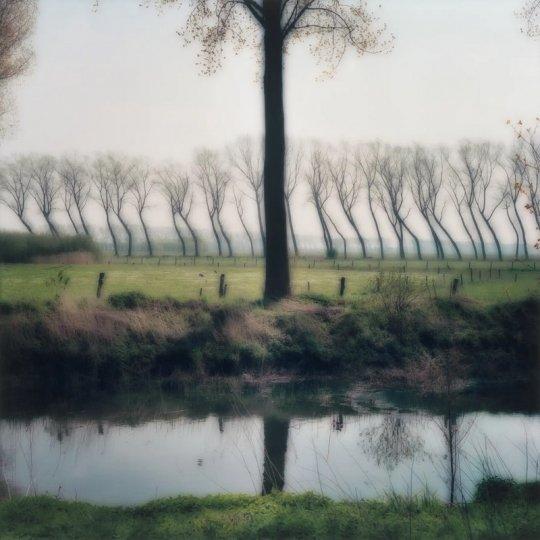 Пейзажи из снов Линн Гизаман - №17