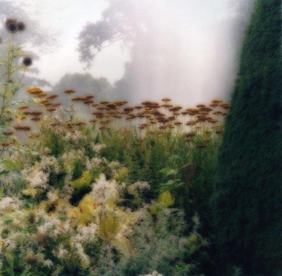 Пейзажи из снов Линн Гизаман - №19