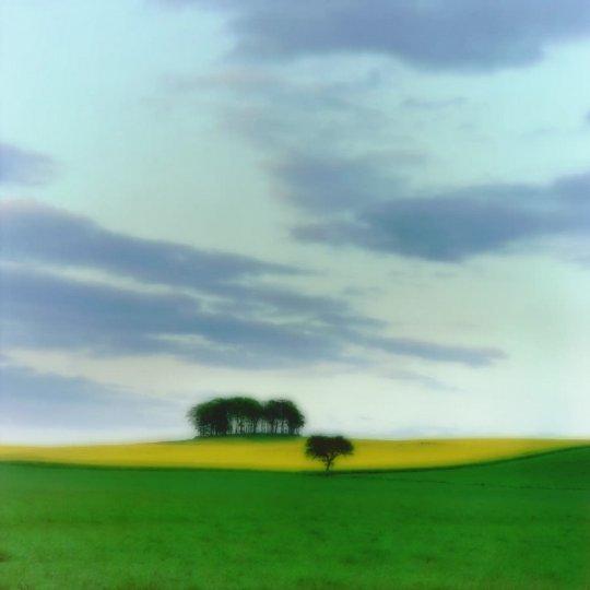Пейзажи из снов Линн Гизаман - №21
