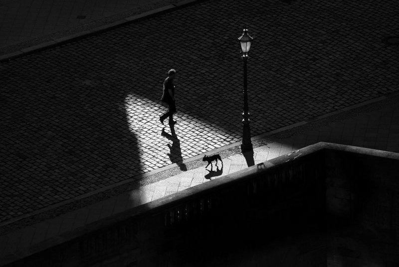 Уличная фотография Гая Коэна - №8