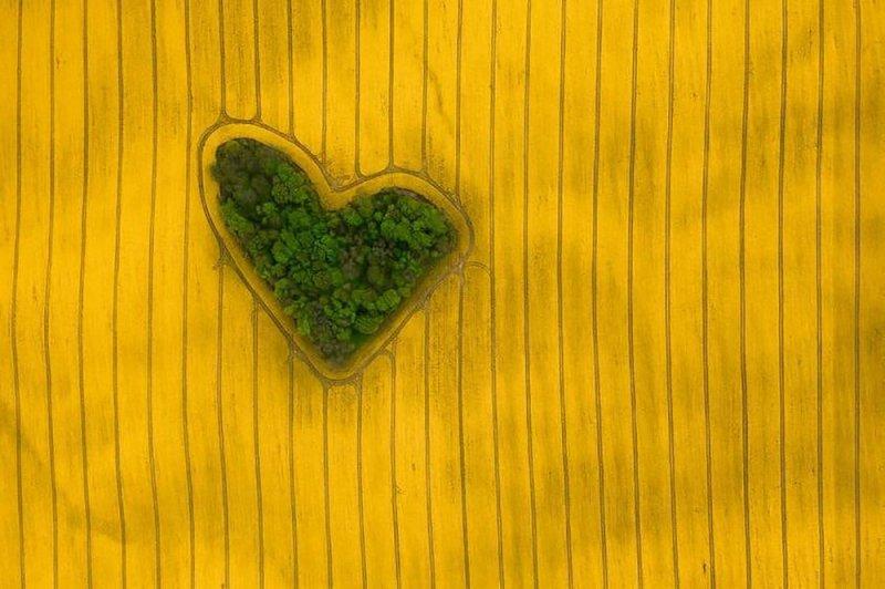 Победитель в категории «Природа». «Остров любви». Автор фото: Иеремиас Гёдек