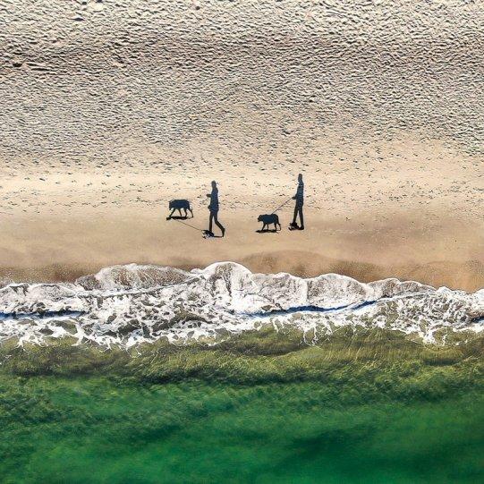 Финалист в категории «Люди». «2 человека, 2 собаки и 4 тени». Автор фото: Евгений Самученко.