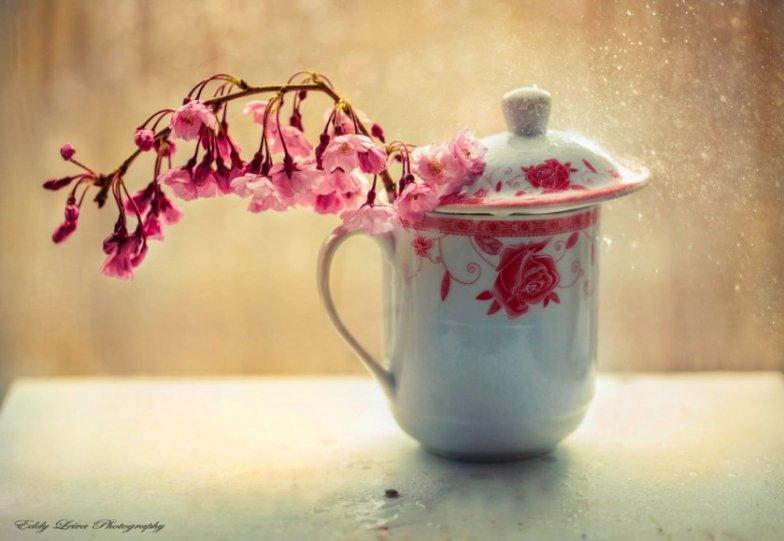 Экстраординарные фотографии цветов - №6