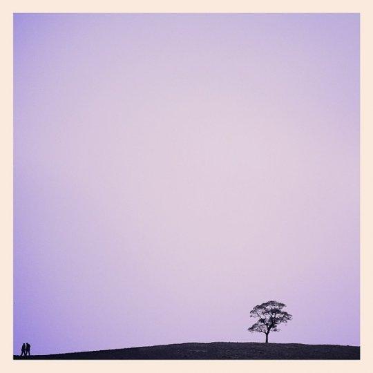 Минимализм в фотографиях Тони Хаммонда - №4