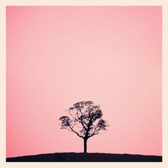 Минимализм в фотографиях Тони Хаммонда - №14