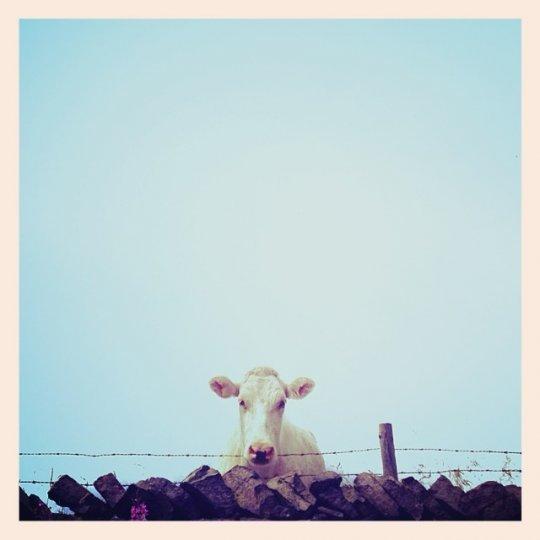 Минимализм в фотографиях Тони Хаммонда - №16