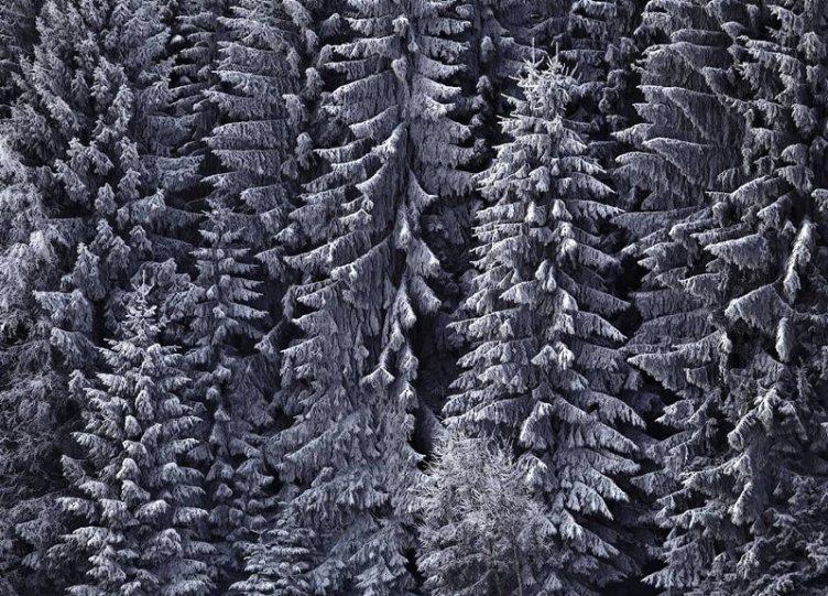 Пейзажи Килиана Шоенбергера - №6