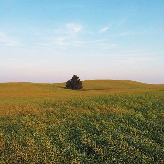 Красивые пейзажи, снятые на телефонную фотокамеру - №2