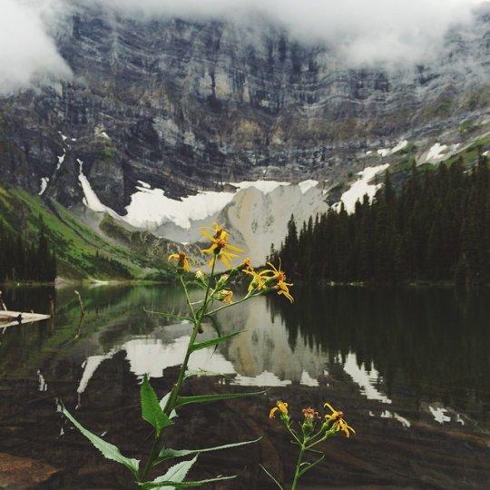 Красивые пейзажи, снятые на телефонную фотокамеру - №10