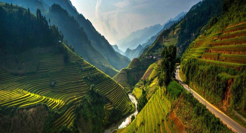 Великолепные рисовые террасы Вьетнама - №2
