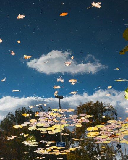 фотограф КанХи Ким - №5