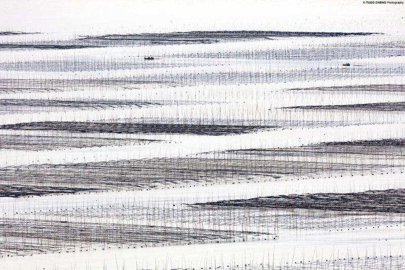 Туго Ченг  «Прибрежная геометрия» - №11