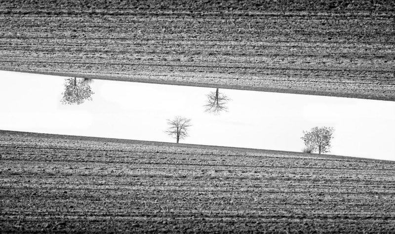 Симметрия и минимализм в фотографиях Адриенн Баласко - №4