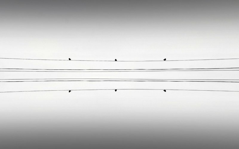 Симметрия и минимализм в фотографиях Адриенн Баласко - №3
