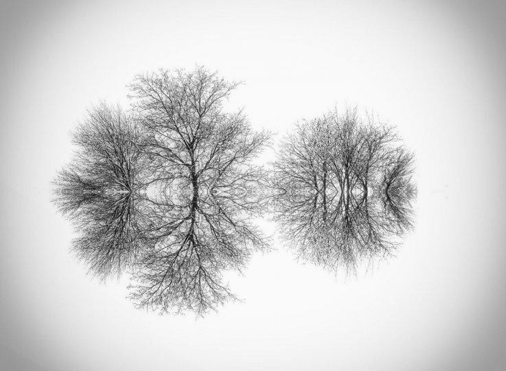 Симметрия и минимализм в фотографиях Адриенн Баласко - №1