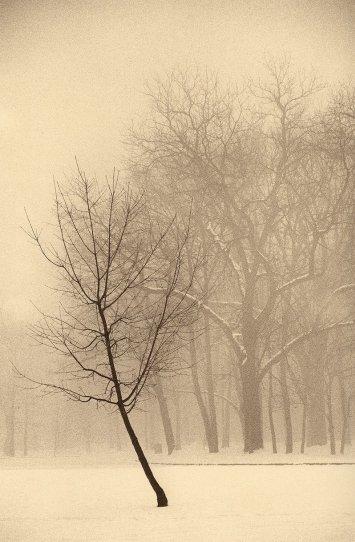 Фотограф Пол Козал - №22