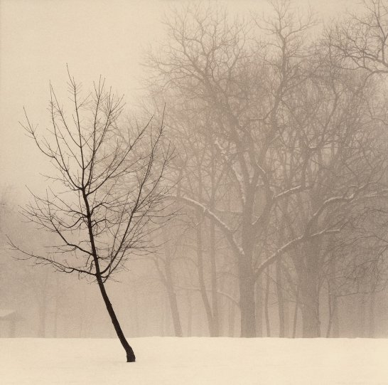 Фотограф Пол Козал - №12