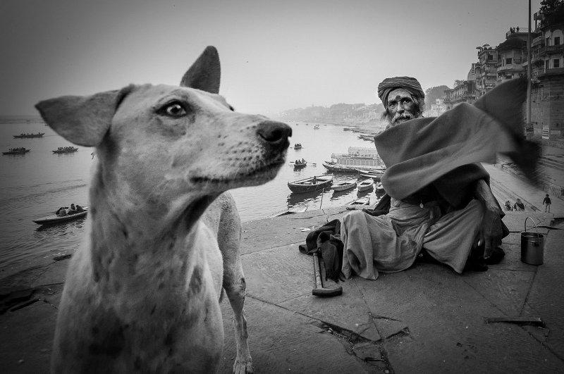 Фотограф Таня Чаттерджи - №10
