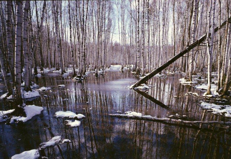 Фотограф Вадим Гиппенрейтер - №2