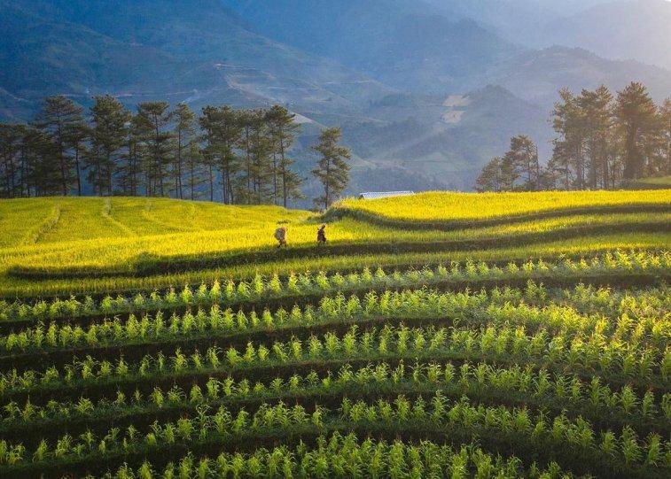 Вьетнам с высоты - №3