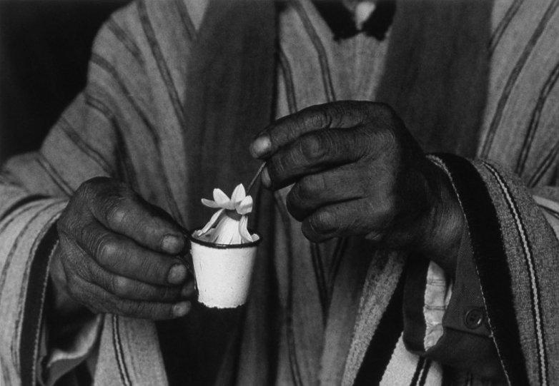Мир чёрно-белой фотографии - №1