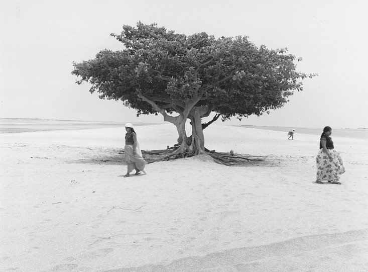 Мир чёрно-белой фотографии - №3