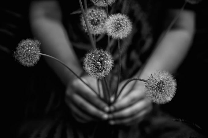 Фотограф Tytia Habing - №6