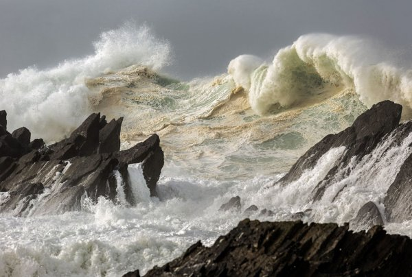 Новости в фотографиях - National Geographic Photo Contest 2013 (Часть 2) - №15
