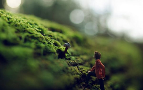 Красивые фото молодого таланта Зева - №11