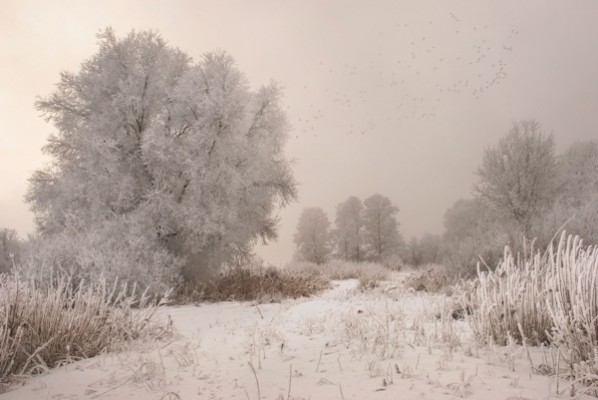 Необъятная Россия в фото пейзажах Даниила Коржонова - №2