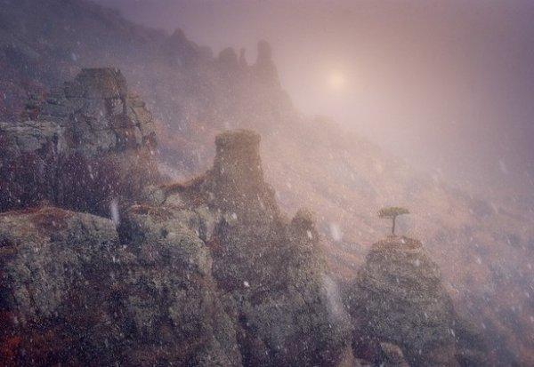 Зимние фото пейзажи из Крыма - №12