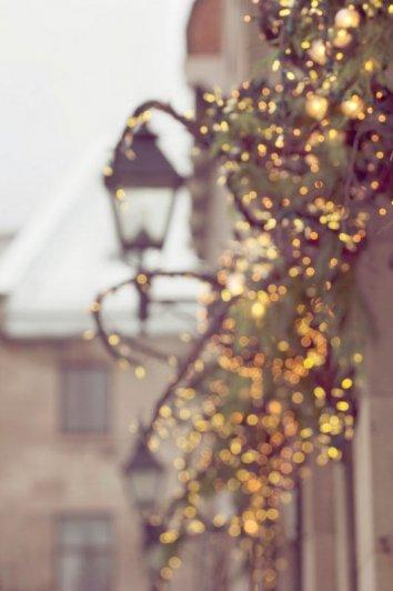 Урок фотографии. Как снимать зимой, полезные советы - №1