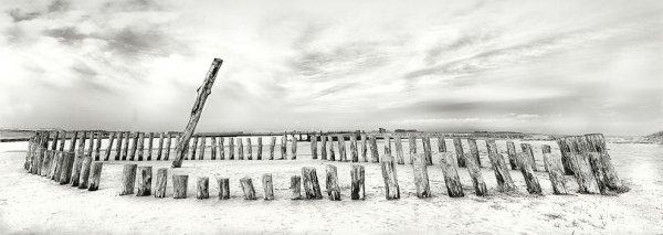 Новости в фотографиях - Лучшие работы конкурса Sony World Photo Awards 2014 - №13