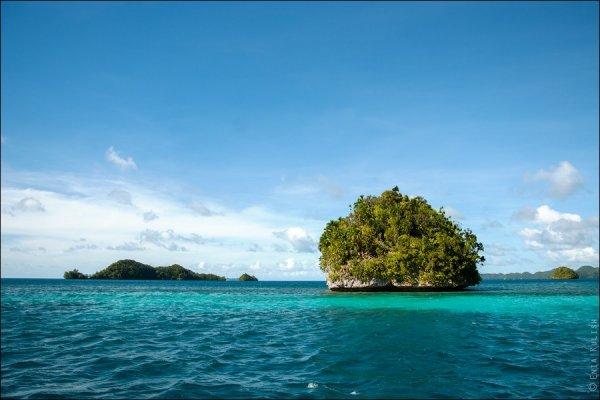 Красивые фото озера медуз - №7