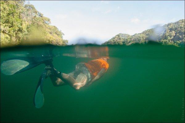 Красивые фото озера медуз - №15