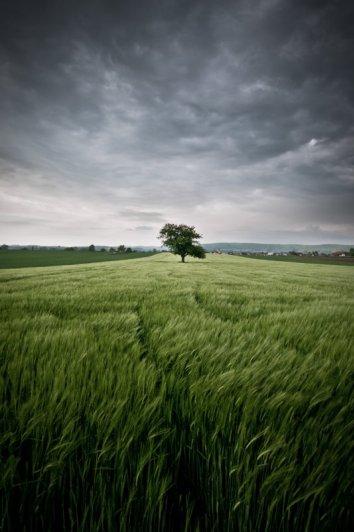 Восхитительные фото пейзажи из Германии. Andreas Wonisch - №14