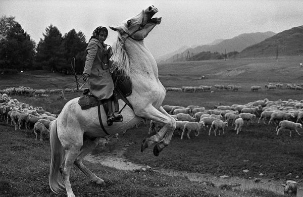 """Профессиональный фотограф Владимир Соколаев: """"Фотограф — это снайпер, а не пулемётчик"""" - №3"""