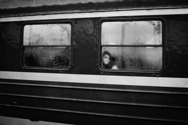 Взгляд в окно - искусство черно-белых фото - №33