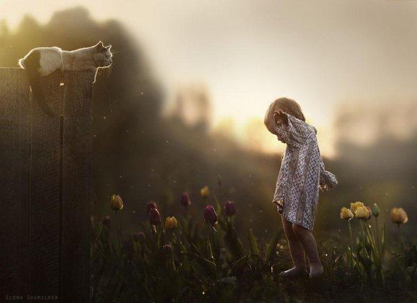 Очаровательные фото кадры - дети и животные - №3