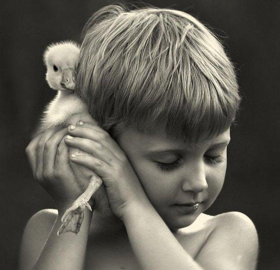 Очаровательные фото кадры - дети и животные - №7