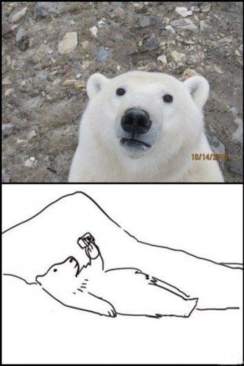 Немного фото юмора! - №2