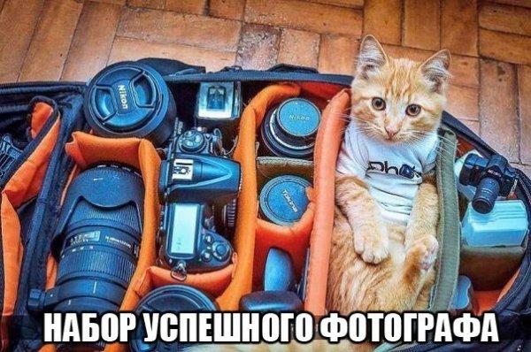 Немного фото юмора! - №6
