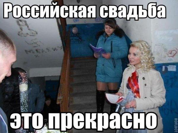 Немного фото юмора! - №10