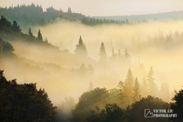 Чувственные фото пейзажи от канадского фотографа Victor Liu - №1