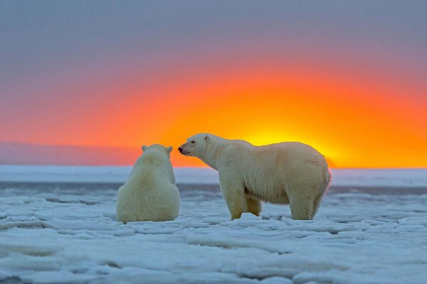 картинки красивый закат